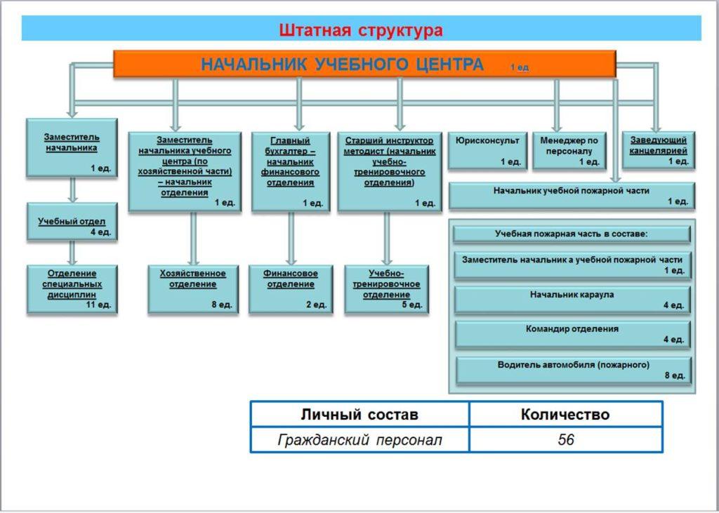 Штатная структура